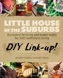 Little House in the Suburbs